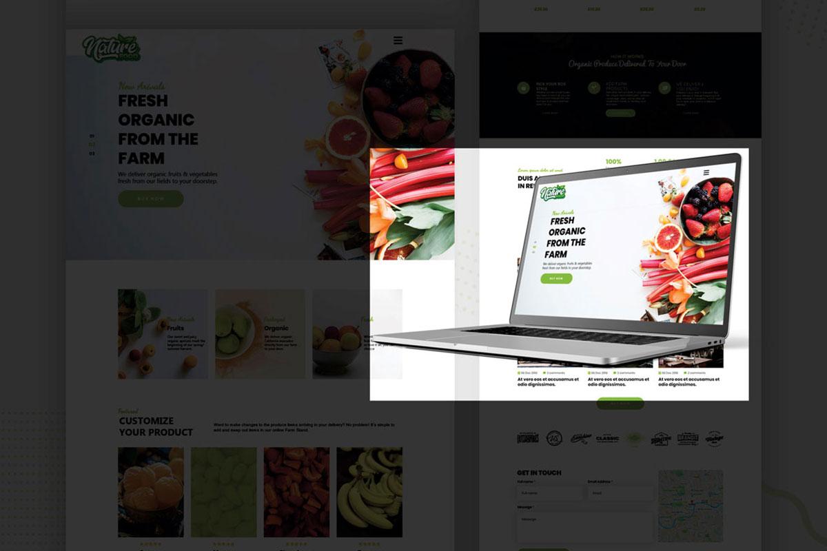 web-design-004